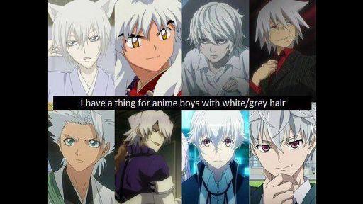 White Grey Haired Guys Anime Amino