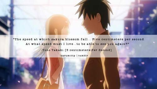 5 centimeters per second quotes anime amino