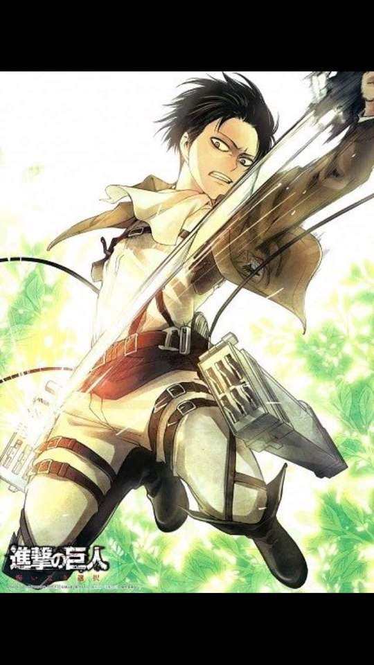 Attack On Titan: A Choice With No Regrets | Wiki | Anime Amino